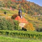 """Weinbergkirche """"Zum Heiligen Geist"""" in Pillnitz, dahinter der Borsberg - Stadtrundfahrt-Bus"""