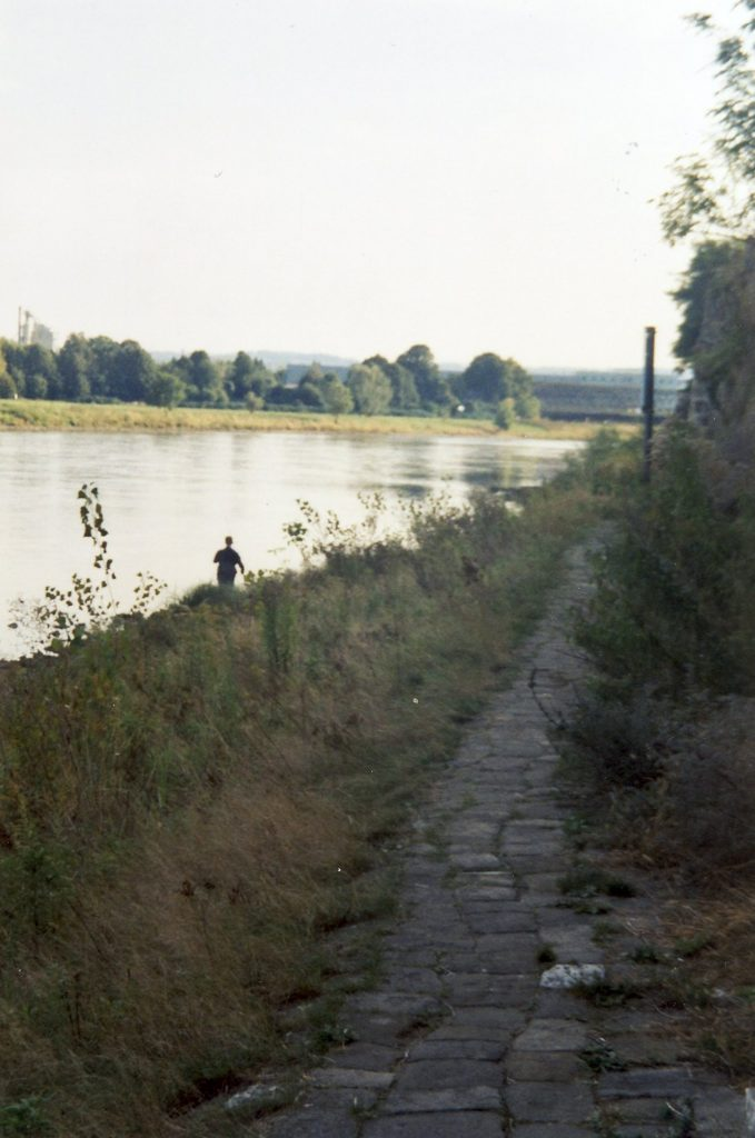 Elbtreidelweg in Altübigau stromab