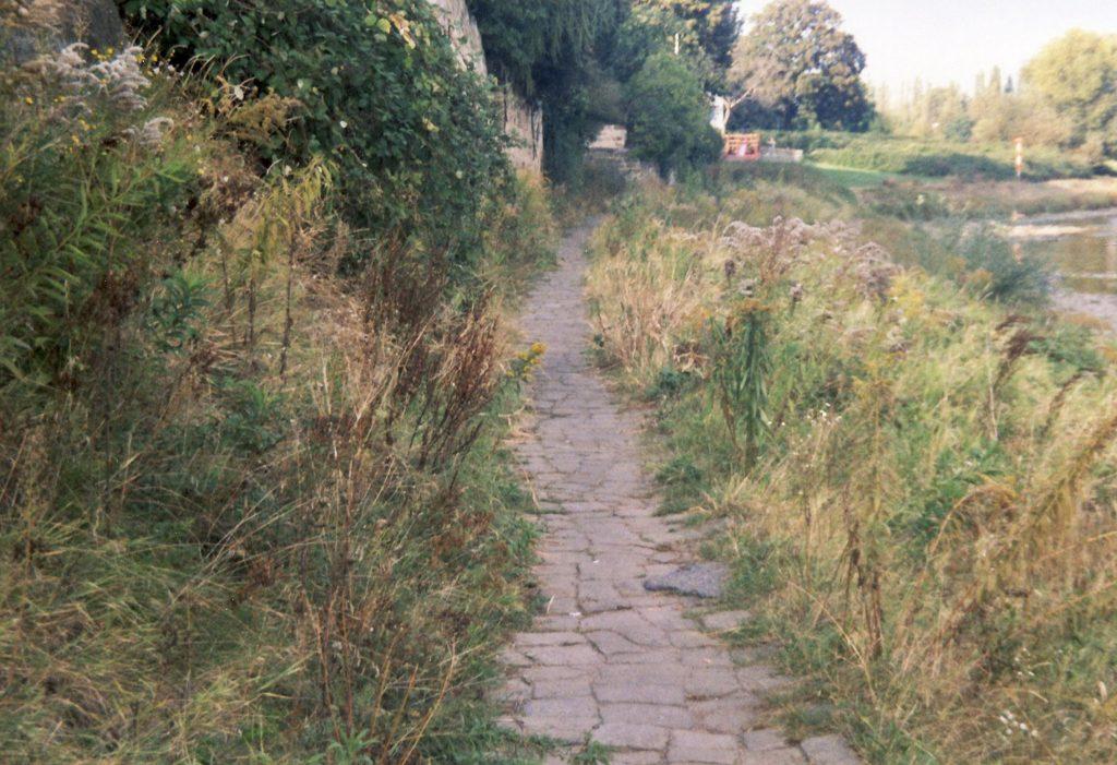 Elbtreidelweg (Leinpfad) in Altübigau